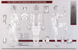 acupuncture-meridian-chart